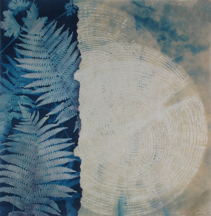 "Ghost Trees, bleached cyanotype with woodcut, 20x20""Woodland series"