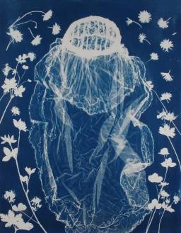 "The June Bride, cyanotype, 36x28"", Woodland series"