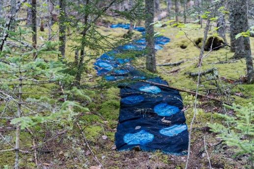 48 feet Burlap treated with cyanotype solution installed at Wolfville Watershed Nature Reserve May to October 2018